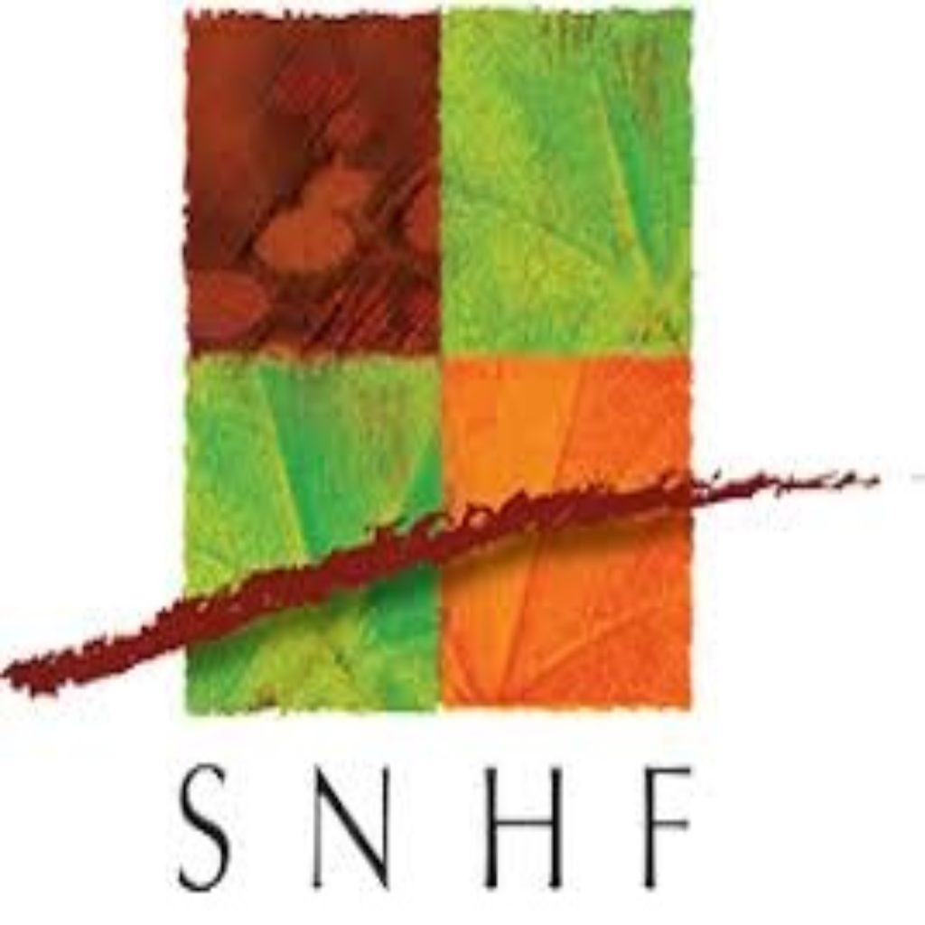 SNHF-1024x1024